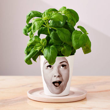 A Personalized Photo Planter is a great gift idea for anyone who loves gardening