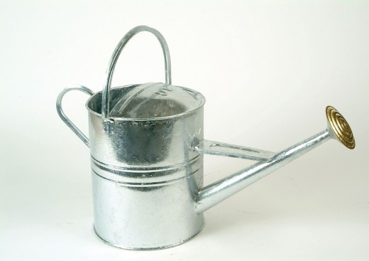 Does your favorite gardener have a watering can?