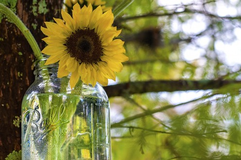4. Use mason jars as vases.