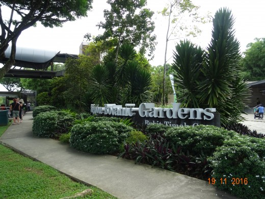 Singapore's Botanic Gardens Images copyright, G Rix 2017, all rights reserved.