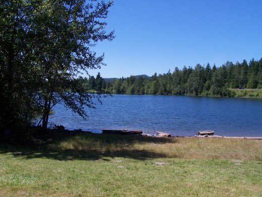 Like an ink spot on an artist's canvas, the lake sat peacefully under the summer sky . . . simile