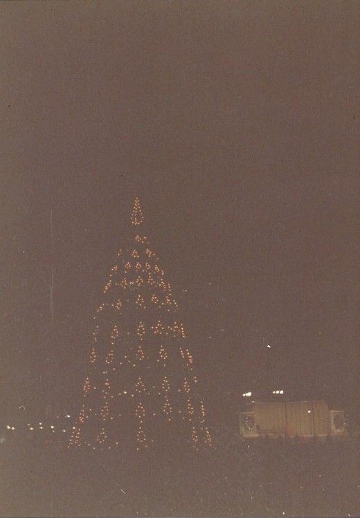 The White House Christmas Tree, December 1988.