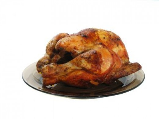 NO turkey or chicken bones for your pet!