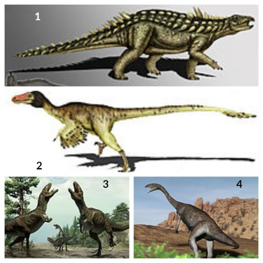 1. Acanthopholis Dinosaur   2. Acrocanthosaurus Dinosaur 3. Adasaurus Dinosaur 4. Allosaurus Dinosaur