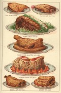 Mrs Beetons Household Management Wonderful Color Illustrations