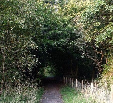 Cumbernauld's Dark Path by  BJSmur