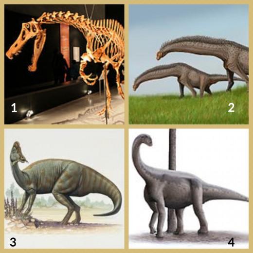 1. Irritator Dinosaur  2. Isisaurus Dinosaur 3. Jaxartosaurus Dinosaur 4.Jobaria Dinosaur