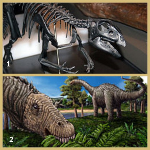 1. Qantassaurus dinosaur  (displayed at the Australian Museum, Sydney)  2. Quaesitosaurus dinosaur