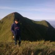 alisamanh profile image