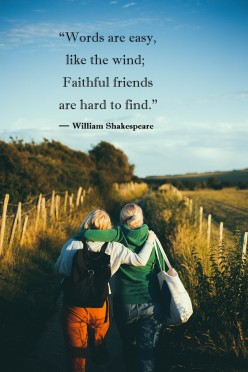 Best Friend Quotes and Proverbs About Friendship