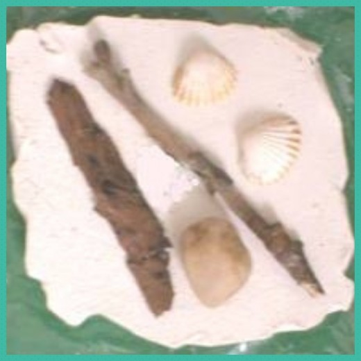 Plaster of Paris fossil making