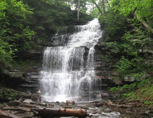 Ganoga Falls (94 feet)