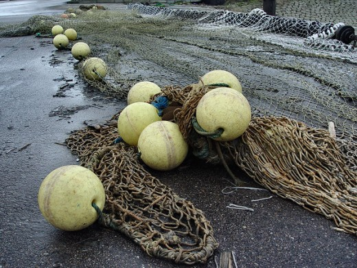 fishing net floats