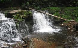 Cayuga Falls (11 feet)