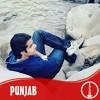 Abdul Subhan125 profile image