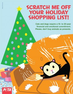 Last Minute Gift-Giving Ideas: 