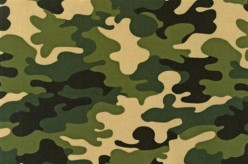 Camouflage as a Social Statement, or Camo up Bro! A Satirical Tale About Clothing Styles