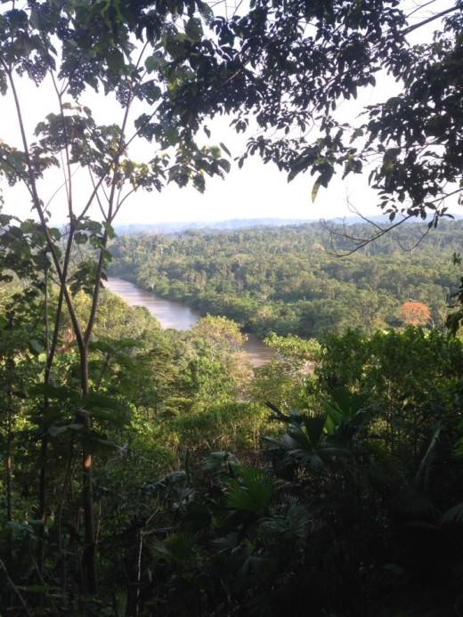 Misahuallí, Rio Napo in The Amazon RainForest