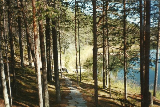 path to the sauna