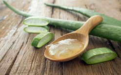 The Miracle Herb- Aloe!