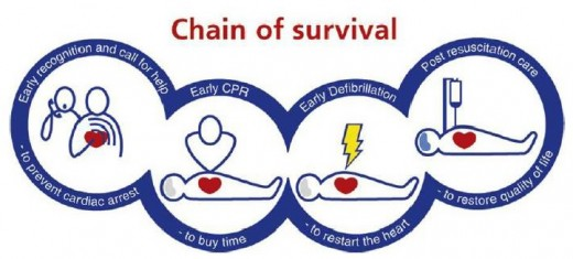 Figure 1. Chain of survival.