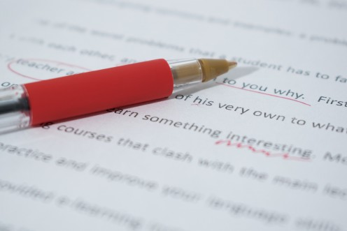 Corrections to Grammatical Errors in Resume