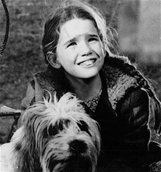 Melissa Gilbert - Little House on the Prairie