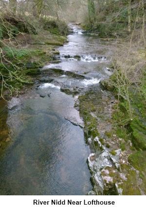 The River Nidd near Lofthouse-in-Nidderdale
