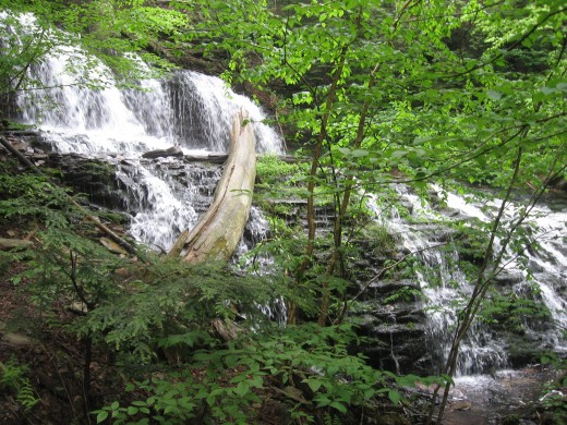 Mohawk Falls (37 feet)