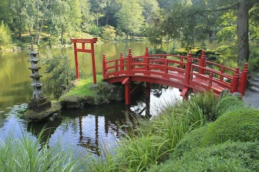 Bridging Japanese Cutural Expectations