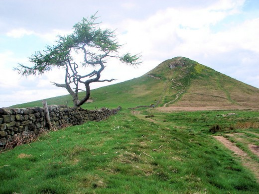 Roseberry Topping approached from Newton Moor