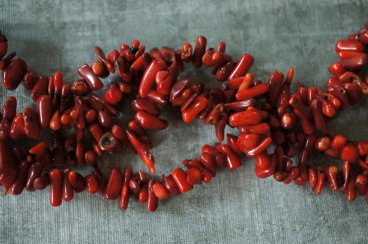 Natural red coral from the ocean.