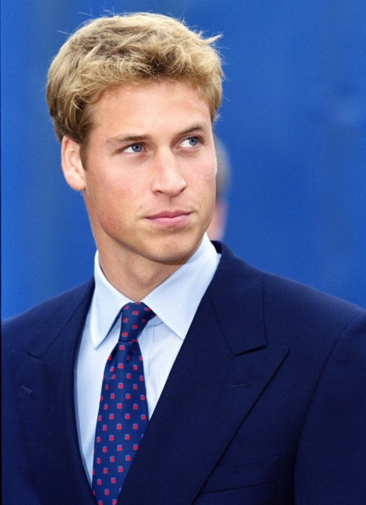Prince William's nice hair in 2011.