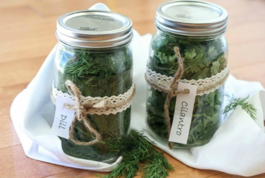 Storing and Cooking With Fresh Herbs