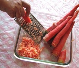 Carrots being grated