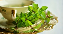 Health Benefits Of Drinking Green Tea