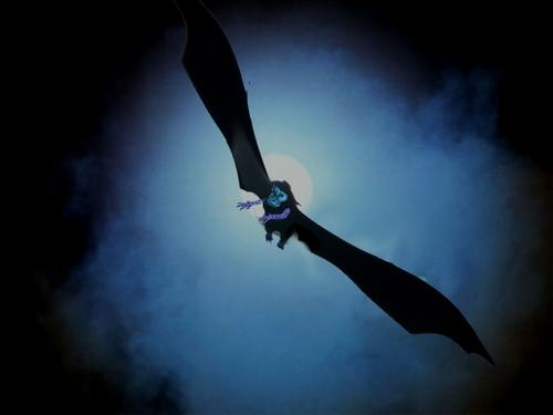 A Giant Bat A Mystery