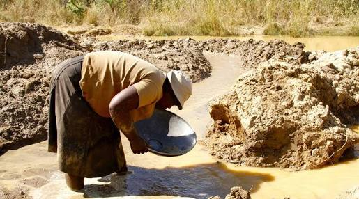 Small scale miner panning for gold