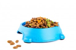 Top 10 Folk Tale About Pet Food and Nutrition