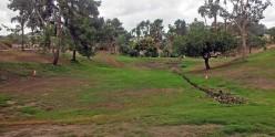 La Mesa's MacArthur Park is Waiting For You