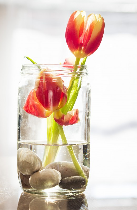Add stones to the bottom of a jam jar then add your water and flower.