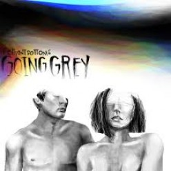 The Front Bottoms: Going Grey Album Review