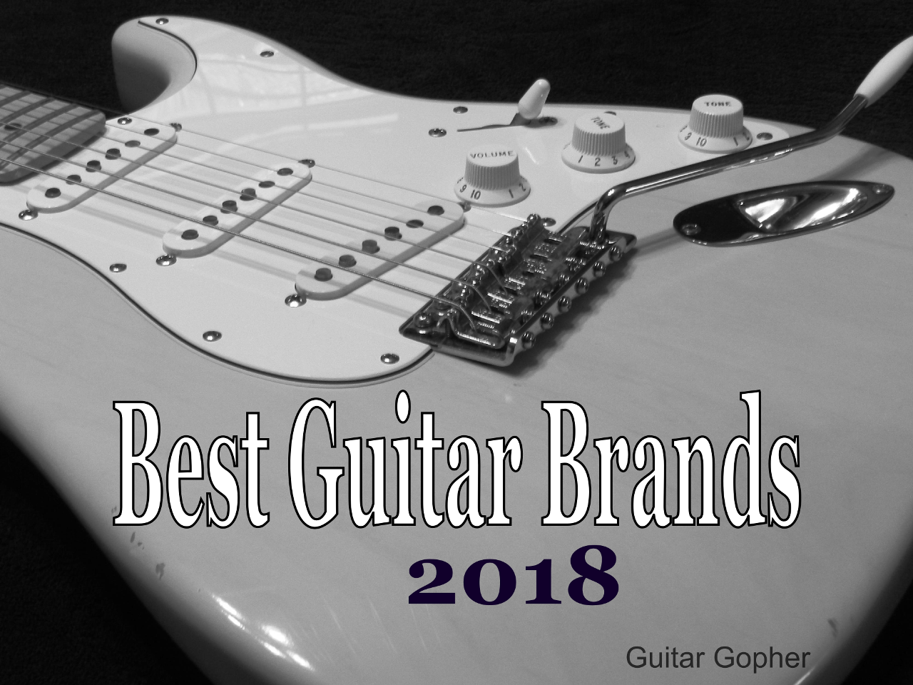 33 Best Guitar Brands: Top Acoustic and Electric Guitars 2018 | Spinditty