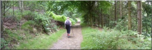 The Chevin Forest Park near Otley, West Riding - plenty of space, lots of tracks to follows without having to bunch up