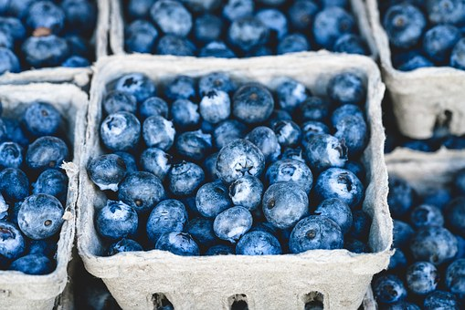 A basket of blueberries carries an abundance of nutrition.  Great to eat just on their own.