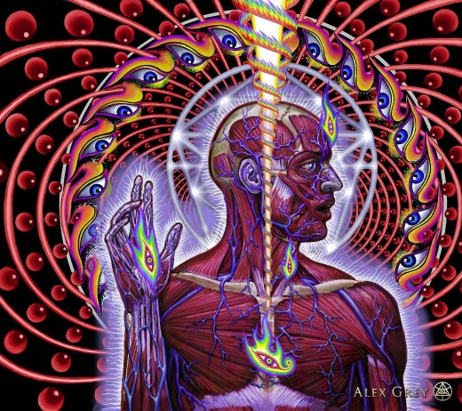 Dissectional Art - Alex Grey - 2001