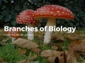 The Branches of Biology & What They Study