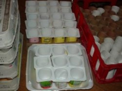 Reuse Yogurt Containers to Start Seeds