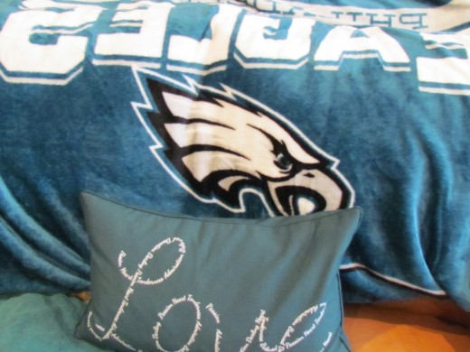 A blanket that was displayed during our Super Bowl party with a love pillow that express how we felt about the team.