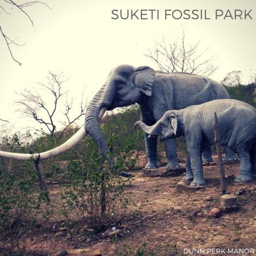Suketi Fossil Park